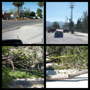 So much debris to be cleaned up everywhere